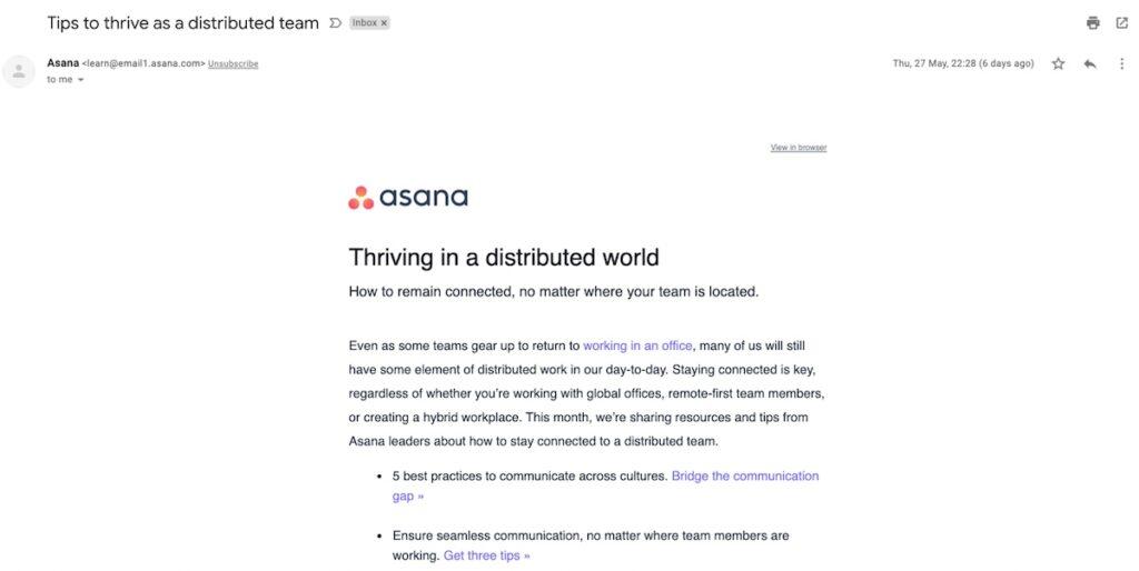 asana newsletter example